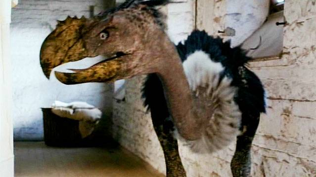 http://images.wikia.com/primeval/images/3/31/TerrorBird_Series4.png