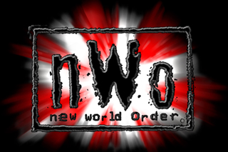 Nwo The Fingerpoke Of Doom | RM.