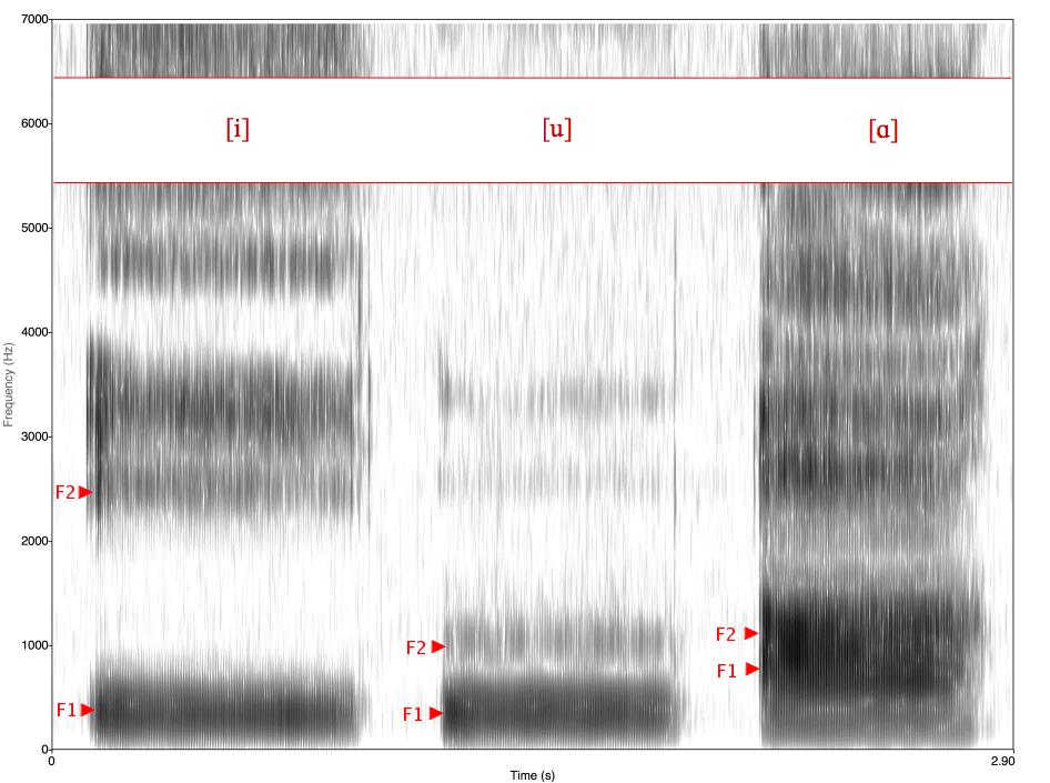 Spectrogram_-iua-.png