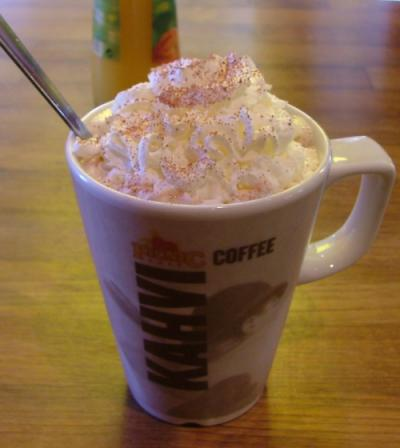 Home for the Holidays Hot Chocolate Recipe by Laura Bush,