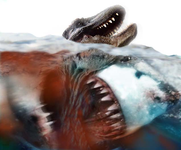 Megalodon was