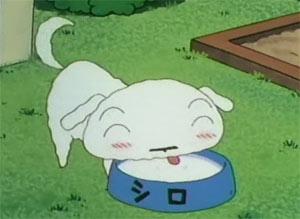 Shero - Shin Chan - Cartoons Wikipedia