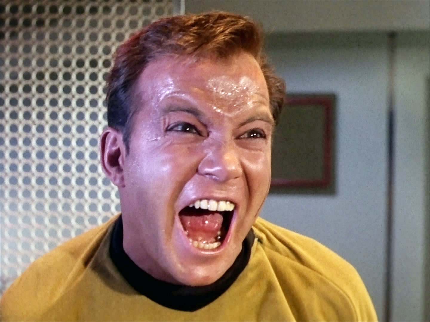 William Shatner as Captain Kirk, screaming and sweating like a pig!