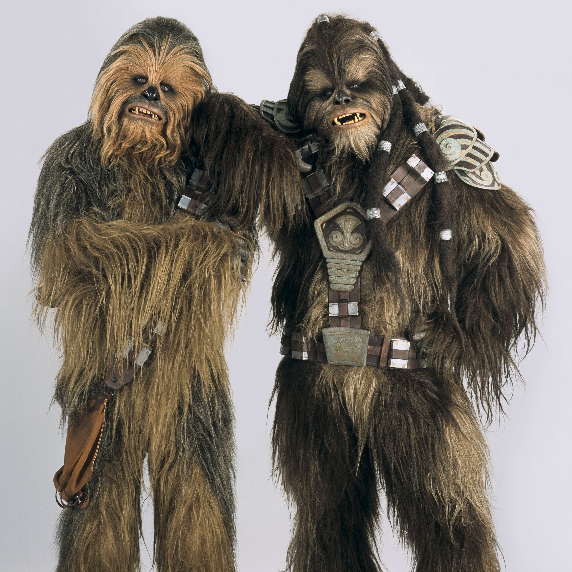 Image - Wooky.jpg - Wookieepedia, the Star Wars Wiki