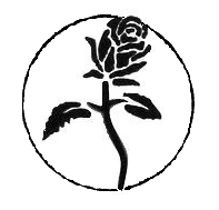 Black Rose - Symbolism Wiki