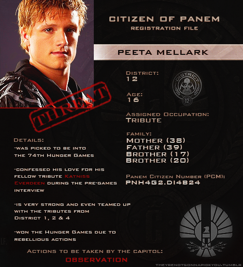 http://images.wikia.com/thehungergames/images/9/9d/Peeta_Mellark's_file.png