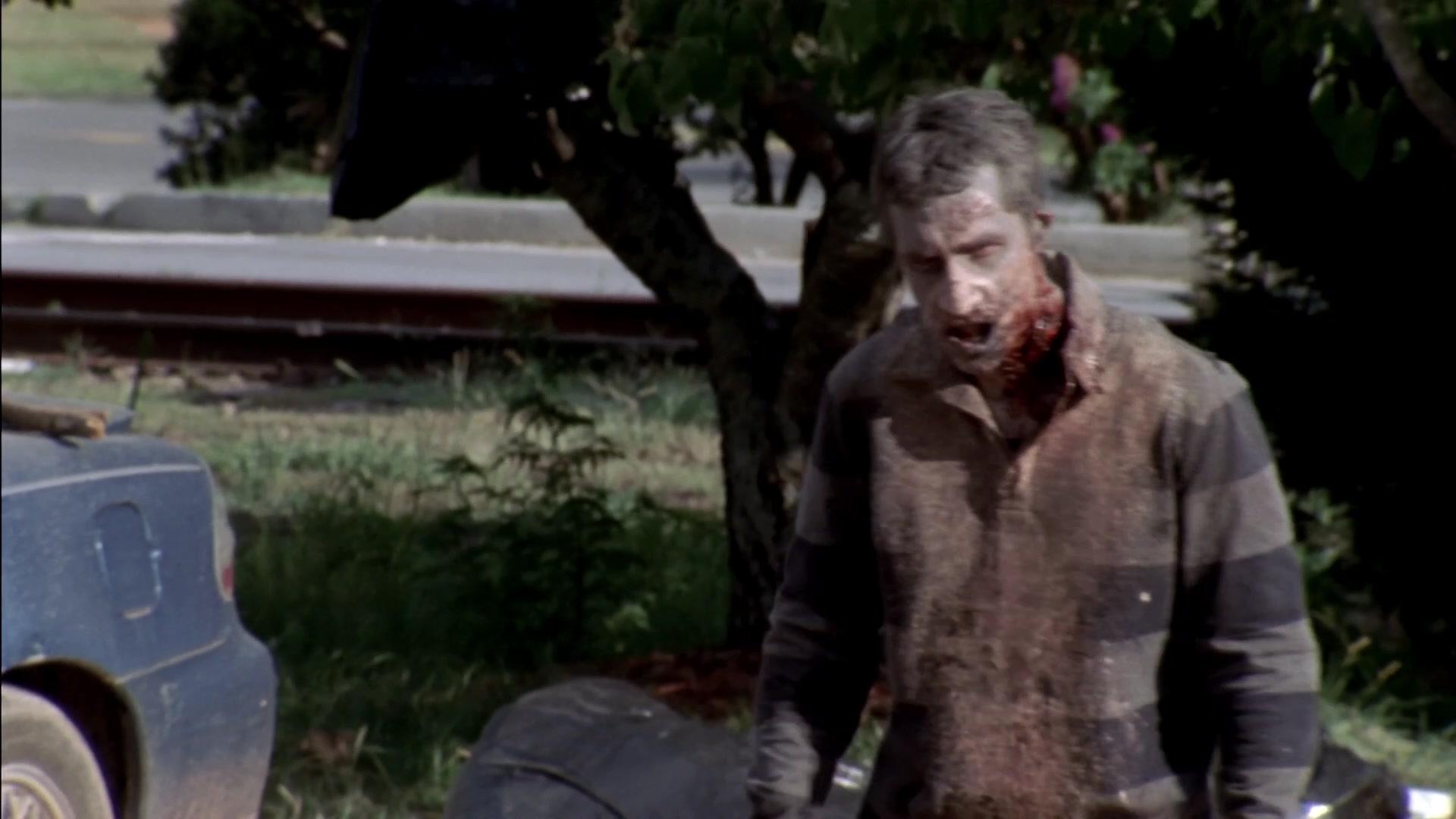 Archivo:The Walking Dead S03E06T 0837.jpg