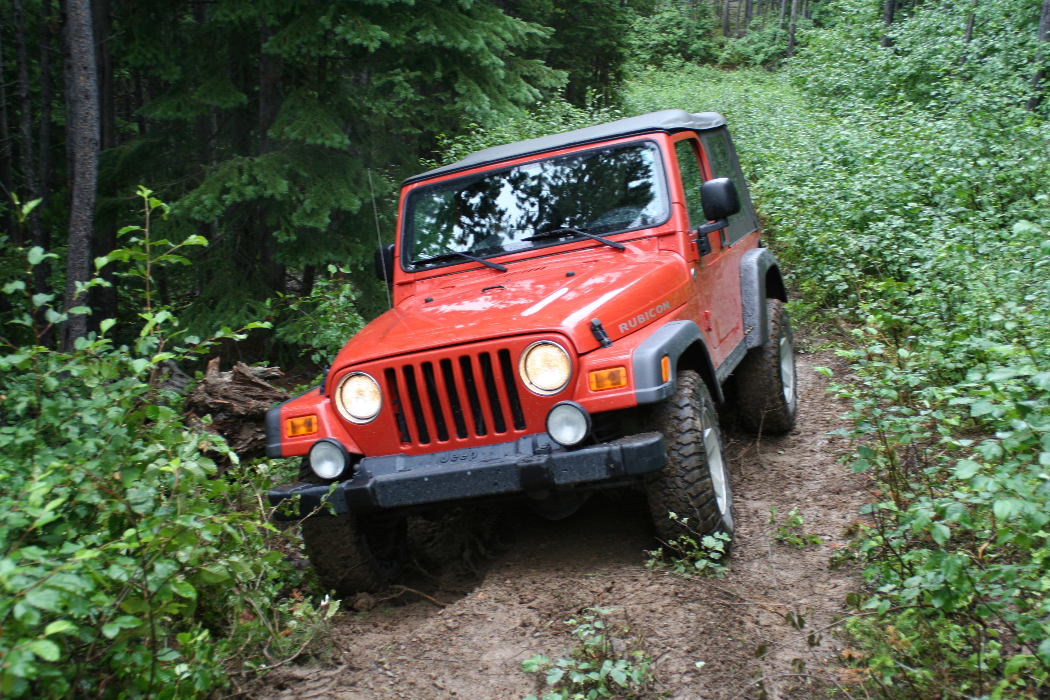 (Jeep Wrangler)