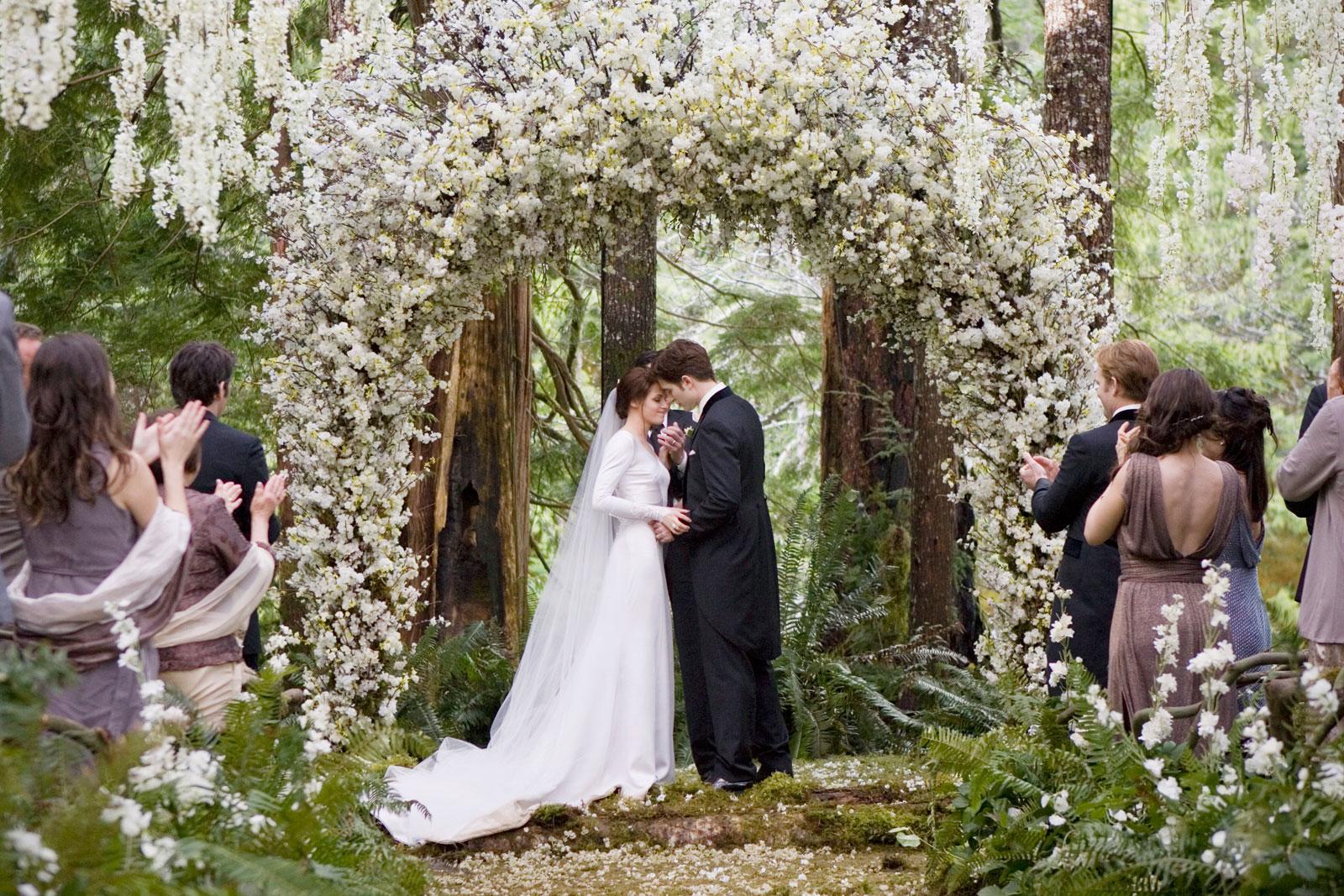 Image - Twilight-Breaking-Dawn-Wedding-Dress-Kristen-Stewart.jpg ...