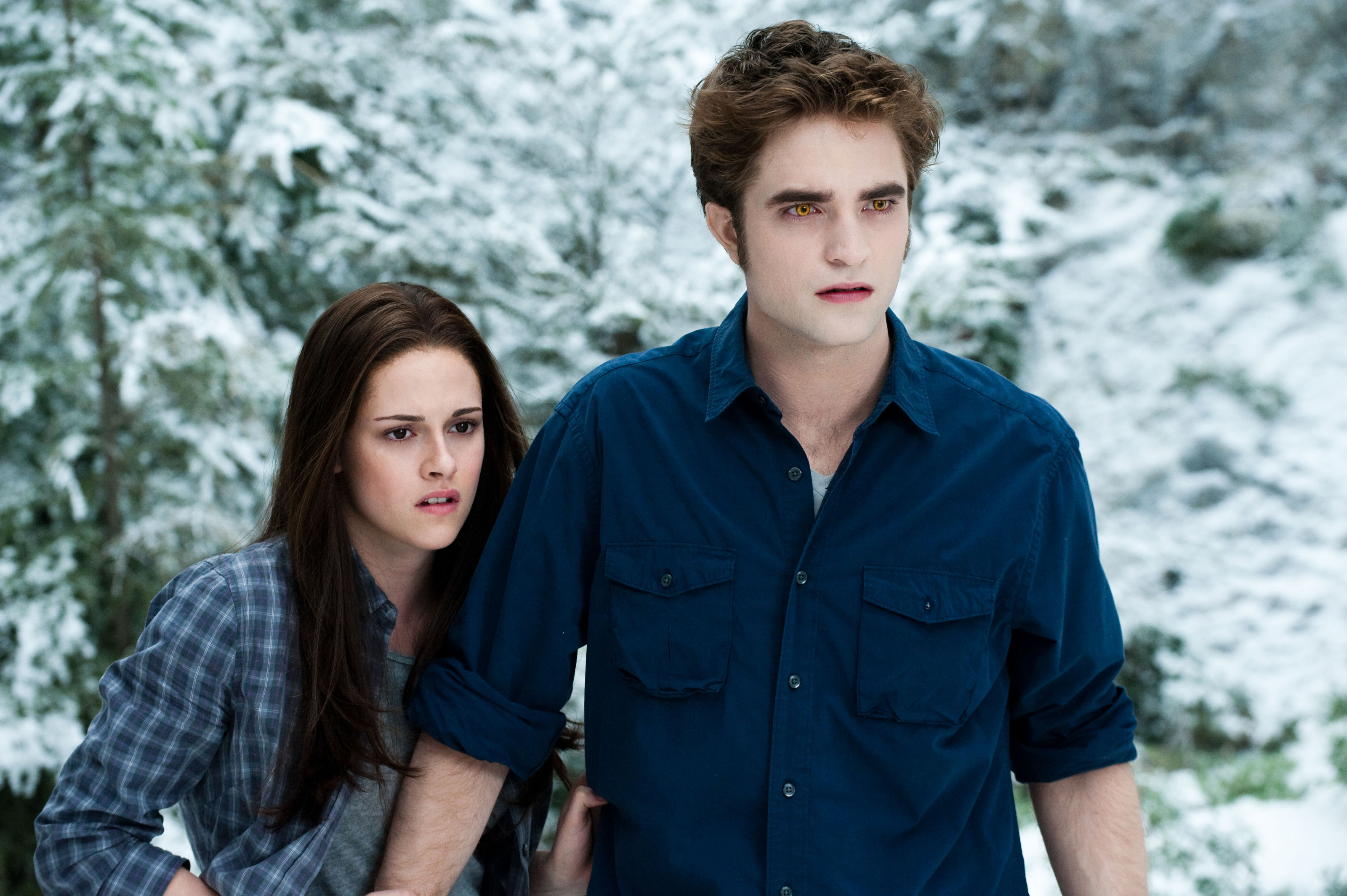 http://images.wikia.com/twilightsaga/images/f/f4/DF-12925R.jpg
