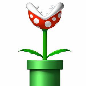 Las 5 Plantas Mas Extrañas del Mundo