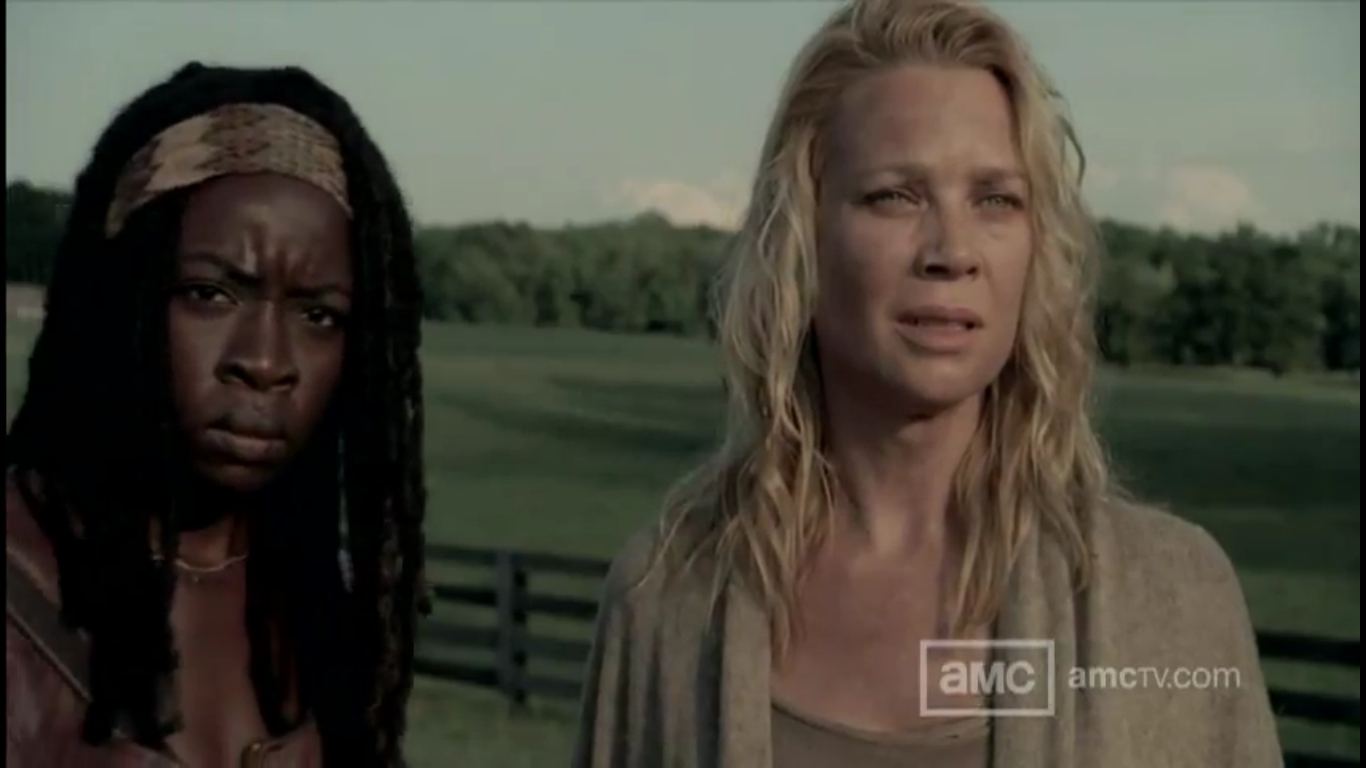 The Walking dead michonne andra