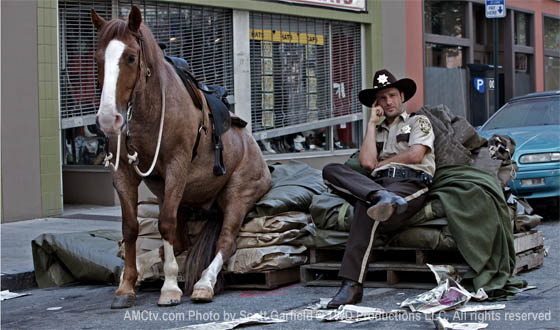 Walking_dead_horse_rick.jpg