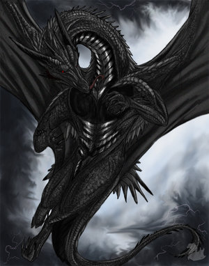 Ashida Hainuel ~Finished~ [Approved Spirit & Host 0-2] Black_dragon