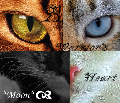 Warrior Cats Pictures on File Warrior Cats By Moon Forever Jpg   Warriors Fanfiction