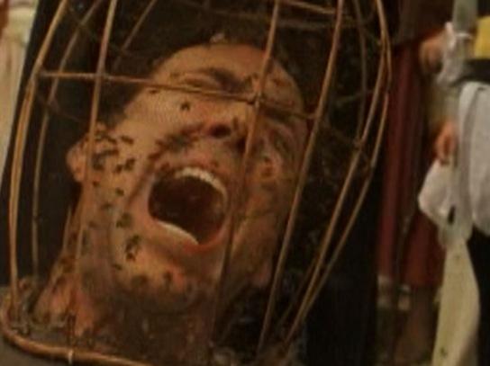 Nicholas Cage bees