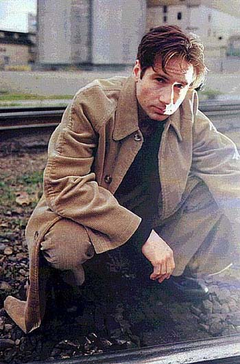 david duchovny x files. David Duchovny at the Internet