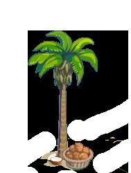 Image - Coconut Tree Finished-icon.png - Treasure Isle Wiki