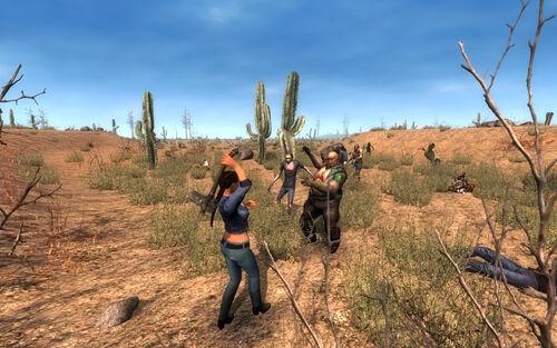 Alpha 8 Desert.jpg