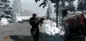 Alpha 14 Snow.jpg