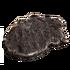 VenisonCharred