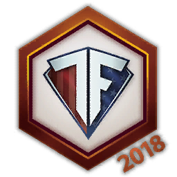 Team Freedom 2018 Logo Spray.png