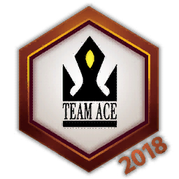 Team Ace 2018 Logo Spray.png