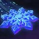 Special Snowflake Portrait.png