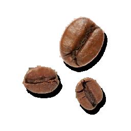 Fresh Coffee Fruit (Primitive Plus).png