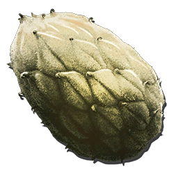 Plant Species Z Seed (Aberration).png