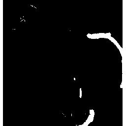 Dodo Wyvern