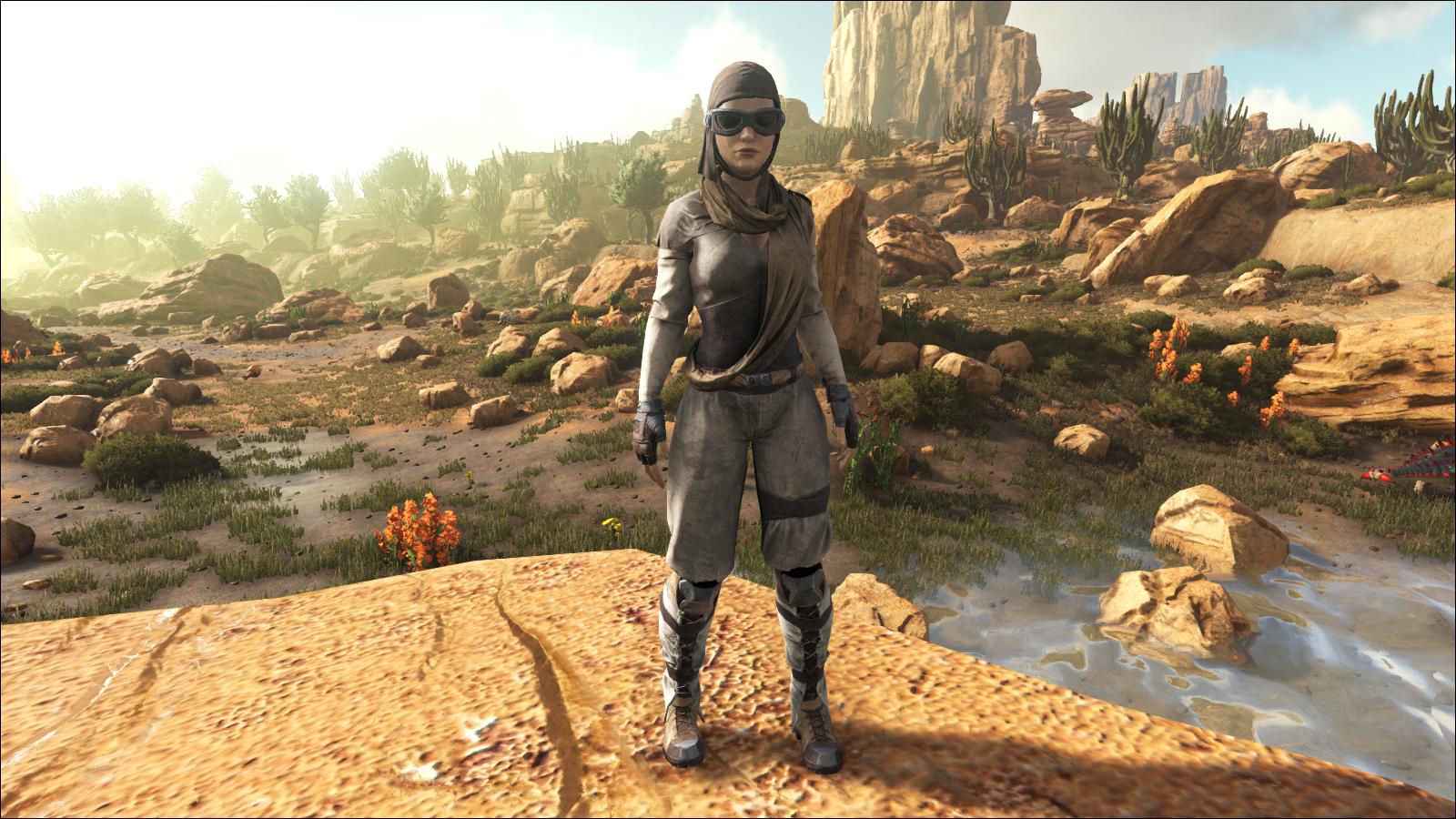 A full set of Desert Armor on the female character.
