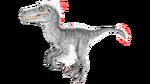 Raptor PaintRegion1.jpg