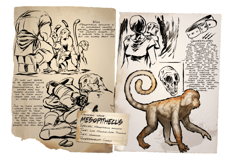 800px-Dossier_Mesopithecus.png?version=8