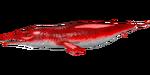 Basilosaurus PaintRegion0.jpg