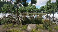 Biome Swamp.jpg