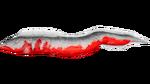 Electrophorus PaintRegion5.jpg