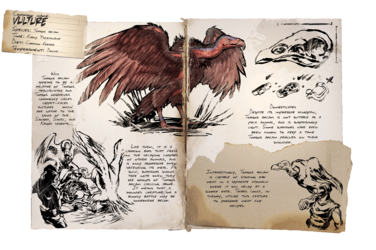 Dossier Vulture.png