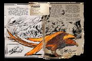 Dossier Phoenix.jpg