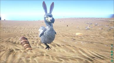 BunnyDodo.jpeg