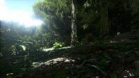 Biome Jungle.jpg