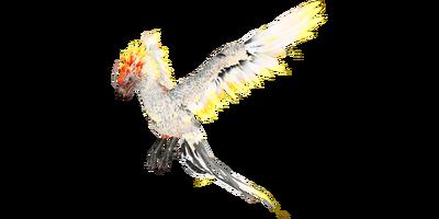 Phoenix Official Ark Survival Evolved Wiki