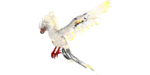 Phoenix PaintRegion1.jpg