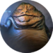 Hutt Contracts
