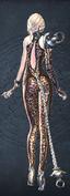 Enchanting Temptress Yun(back view).png
