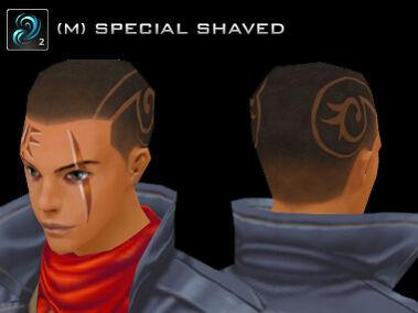 ChangeKit HairStyle Fever B M.jpg