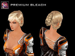 Season Hairstyle - Official Cabal Wiki