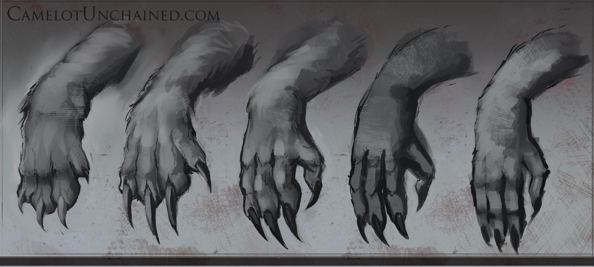 Md hands 05.jpg