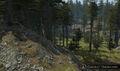 CU Landscape 600.jpg