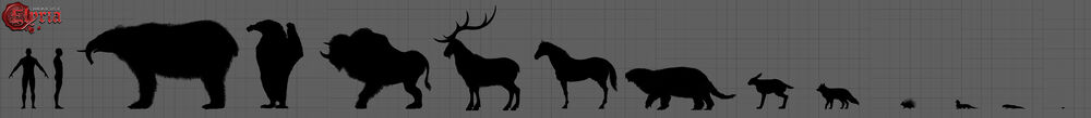 Creature Sizes.jpg